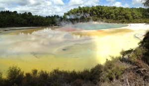 Wai-O-Tapu Thermal Wonderland (1)