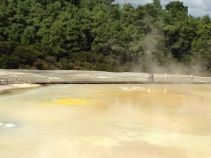 Wai-O-Tapu Thermal Wonderland (4)