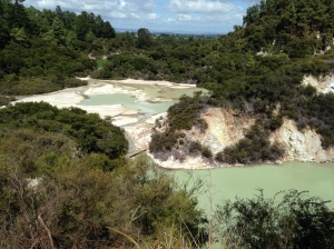 Wai-O-Tapu Thermal Wonderland (5)